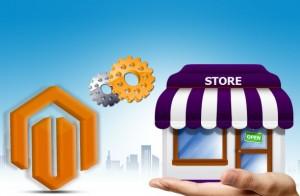 Custom Store Development