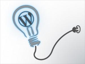 Wordpress Custom Plugins